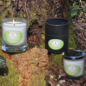 lime basil and mandarin candle