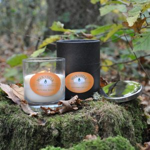 autumn spice doublewix soy wax candle