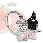Grapefruit & Basil Car Diffuser