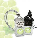 Lime & Mint Car Diffuser